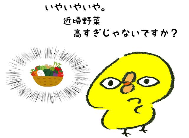 野菜 高い 節約