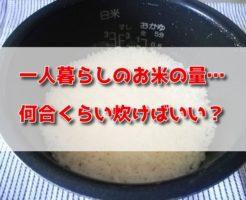 一人暮らし お米 炊く量